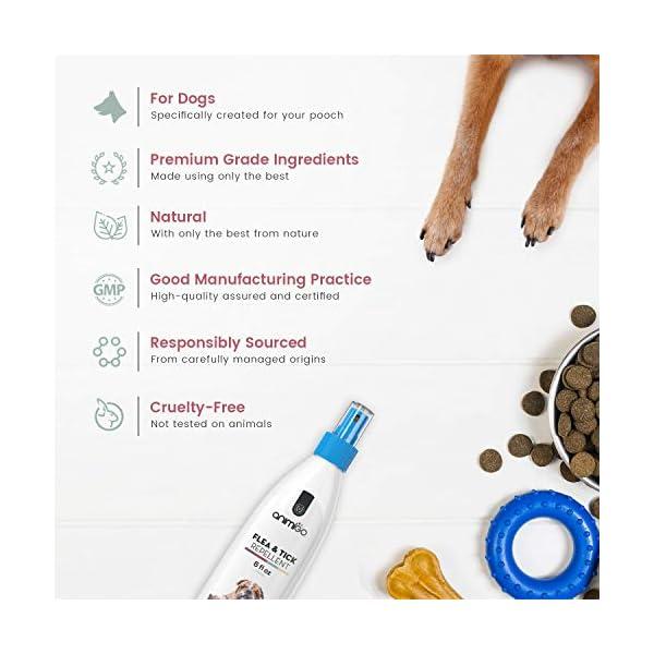 Animigo Flea & Tick Repellent for Dogs - Pest Protection Spray - Repels Parasites - For Fleas, Ticks, Flies & Mosquitos - With an Essential Oil Blend - Non-Toxic - Safe for Dogs - 175ml/6fl oz Spray 3