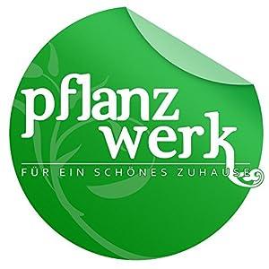 PFLANZWERK® Pflanzkübel Holzfass Ø37cm 100% BIO-AKAZIENHOLZ Weinfass *Frostbeständiger Blumenkübel* *UV-Schutz* *Qualitätsware*