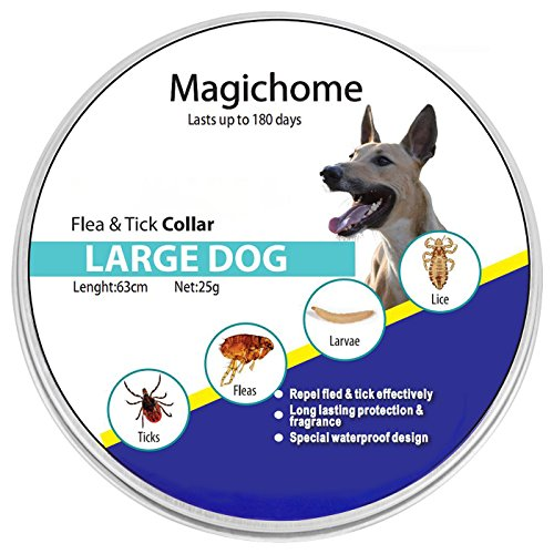 MagicHome Collar XL