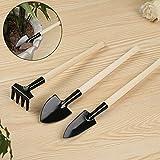 EMVANV Juego de 3 piezas de mini herramientas de jardín, pala de rastrillo para jardinería, maceta suelta, mango de madera, herramientas de jardín para niños