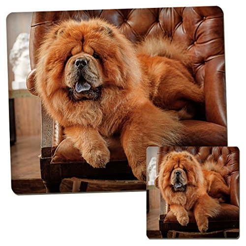 chow-chow-dog-animal-enfants-set-de-table-et-dessous-de-verre-ensemble-de-085