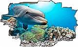 DesFoli Delfin Korallen Meer 3D Look Wandtattoo 70 x 115 cm Wanddurchbruch Wandbild Sticker Aufkleber C183