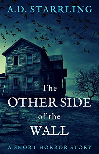 The Other Side of the Wall: A Short Horror Story (English Edition
