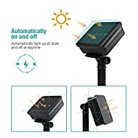 50 LED Solar Power String Light for Outdoor panpany 6.8 m Flower Banquet Solar Lights Garden Lights Waterproof Light Lamp for Garden by Panpany