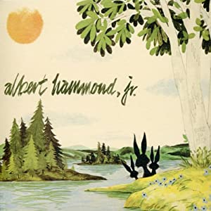 Albert Hammond Jr. In concert