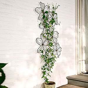 Rankgitter und wanddeko clematine garten for Wanddeko pflanzen