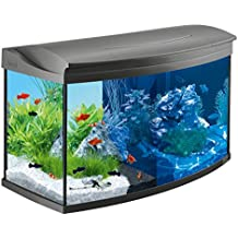 Tetra AquaArt Evolution Line LED Aquarium-Komplett-Set 100 Liter anthrazit (moderne LED Beleuchtung, integrierte Tag-Nachtlichtschaltung, gebogene Frontscheibe)
