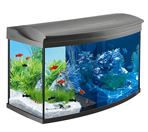 Tetra AquaArt Evolution Line LED Aquarium-Komplett-Set 100 Liter anthrazit