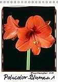 Polacolor Blumen 1 (Tischkalender 2019 DIN A5 hoch): Blumen Stilleben im Polacolor Retro Stile, Fotokunst (Monatskalender, 14 Seiten ) (CALVENDO Kunst)