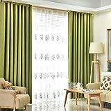 Bwiv vorhänge mit ösen Blickdicht Gardinen Leinen Schlaufen Landhausstil Verdunklungsvorhang Schlaufenschal Dekoschal für Wohnzimmer Schlafzimmer Kinderzimmer Outdoor Grün 140X260 cm