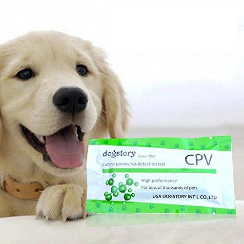 Alian CPV Parvo-Streifen Test Begleithund Hunde Medizinisches Familie Stehend Lieferungen