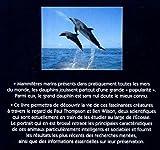 Image de Portraits nature : dauphins