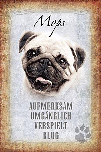 Schatzmix Hunde steckbrief: Mops - aufmerksam, umgänglich, verspielt, klug Metal Sign deko Schild Blech Garten -