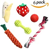 SCENEREAL Small Dog Chew Toys Set - 6 Pcs Best Stuffed Cute Plush Rope Puppy Toys for Small Dogs Cats
