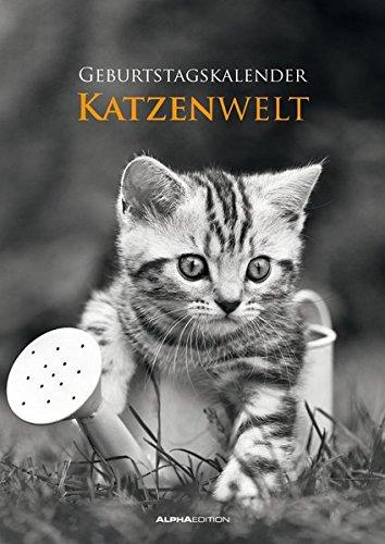 Katzenwelt - Wandkalender A4 - Jahresunabhängig ()