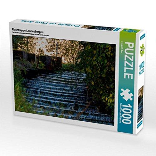 Fischtreppe Landesbergen 1000 Teile Puzzle quer (CALVENDO Natur)