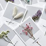 XitonGreeting Cartes sec de fleur 11pcs Carte de remerciements Blank Artesanat Creative pour Wishes d'affaires de vacances Anniversaire...