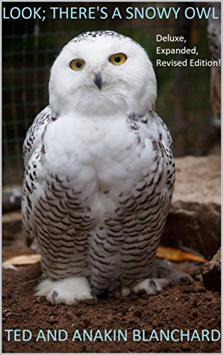 Look! There's a Snowy Owl!: Deluxe, expanded, revised edition! (English Edition)