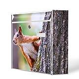 Burg-Wächter Motiv Briefkasten, Stahlblech weiß, MAIL 5877 W Postkasten 36x32x10cm mit Motiv Eichhörnchen