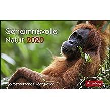 Geheimnisvolle Natur 2020 23x17cm