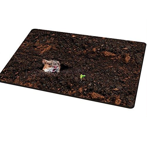 life-of-spring-paillasson-par-lanchuon-40x60cm-decorative-paillassons-drole-entree-way-floor-rug