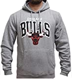 Mitchell & Ness Hoody Chicago Bulls Traditional Team Arch grey XL
