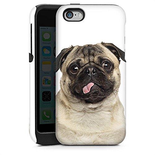 Apple iPhone 5 Housse Outdoor Étui militaire Coque Carlin Chiot Chien Cas Tough brillant