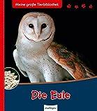 Die Eule (Meine große Tierbibliothek)