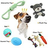 Bowada Puppy Toys Dog toys gift set with Interactive Toys,Squeak Toys,Chew Toys,Balls,Plush Toys for puppy,small and Medium Dogs 5 PCS