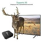 2018-Dernire-dition-Android-TV-Box-X962G-16GMini-Smart-TV-Box-avec-Mini-Clavier-Android-71-Neueste-Amlogic-s905w-Quad-Core-Processeur-4K-Ultra-HD-H265-HDMI-WiFi-Media-Player