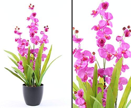 Künstliche Orchidee mit violett leuchtenden Blüten 80cm mit Topf – Kunstpflanze Kunstbaum künstliche Bäume Kunstbäume Gummibaum Kunstoffpflanzen Dekopflanzen Textilpflanzen