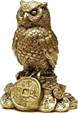 #10: ASTROGHAR Feng Shui Owl A Symbol Of Wisdom And Protection From Evil , Owl Bird Figure