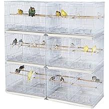 pied cage oiseaux. Black Bedroom Furniture Sets. Home Design Ideas