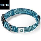 Embark Pets Reflektierendes Hundehalsband, Small, blau