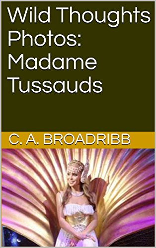 wild-thoughts-photos-madame-tussauds-english-edition