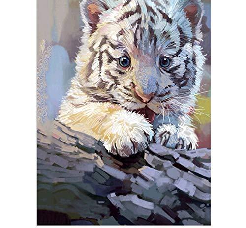 MYLOOO Nette Tiger 5d DIY Diamant malerei kreuzstich mosaik Stickerei kristall DIY Haus wanddekoration 30x40 cm