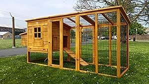 Eggshell windsor poulailler taille xxl 2 50m 100 anti for Kaninchenstall einrichten