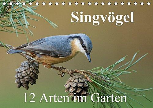 Singvögel - 12 Arten im Garten (Tischkalender 2018 DIN A5 quer): Kalender mit 12 künstlerischen Porträts häufiger Singvögel in unserem Garten (Monatskalender, 14 Seiten ) (CALVENDO Tiere)