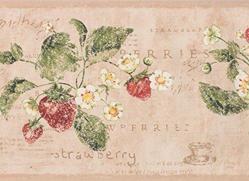 York Wallcoverings Vintage weiße Blumen Erdbeer Lachs Rosa Tapete Grenze Retro-Design, Roll-15' x 7