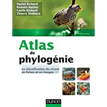 Atlas de phylogénie - La classification du vivant en fiches et en images