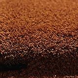 CUICUI Teppich Kinder Schlafzimmer Teppich Nordischen Teppich Wohnzimmer Teppich Sofa Europa Prinzessin Rechteck Blended Carpet Coarse Shag Rug Rug,200 x 300 cm,Braun