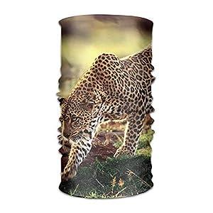 tianjianzulinyouxiangongsi Headwear Leopard Cheetah Outdoor Scarf Headbands Bandana Mask Neck Gaiter Head Wrap Mask Sweatband