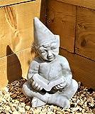 Große Pixie Elfe Fairy Garden Ceramic Ornament Figur Ein Buch Lesen