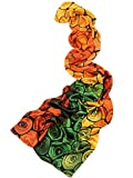 Prettystern - P540 Langer Seidenschal Farbenfroh Kandinsky farbstudie Quadrate Inspiriert - Bunt Jahresring