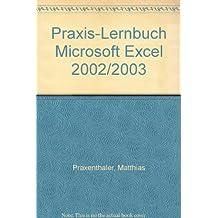 Praxis-Lernbuch Microsoft Excel 2002/2003