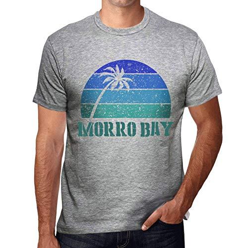 Herren Grafik Tee Shirt Morro Bay Sonnenuntergang Grau Meliert -