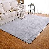 JH Teppich Teppich Matte rechteckige Einfache Rutschfeste Kreative Sofa Couchtisch Teppich Moderne Tür Matten Wohnzimmer Halle Schlafzimmer (Color : Gray, Size : 80 * 200cm)