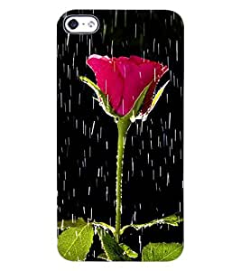 ColourCraft Beautiful Rose Design Back Case Cover for APPLE IPHONE 4S