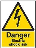 vsafety Schilder 68019bc-r Gefahr Electric Shock Risiko Achtung-Zeichen, 1mm starrer Kunststoff, Portrait, 300mm x 400mm, schwarz/gelb