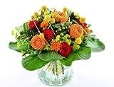 Blumenversand - Premium Blumenstrauß - zum Geburtstag - Tanz der Galaxien mit roten Rosen - mit Gratis - Grußkarte deutschlandweit versenden